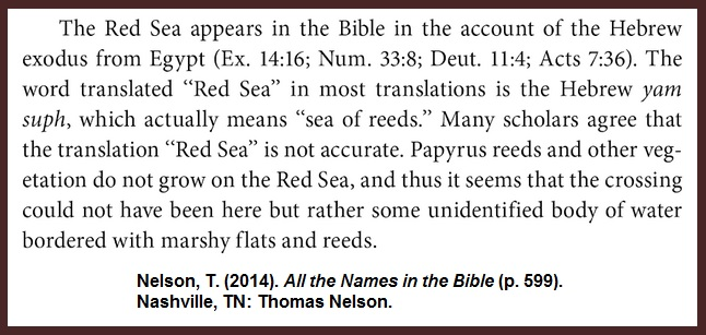 Nelson-Rea-Sea-Reeds-Nile-Exodus