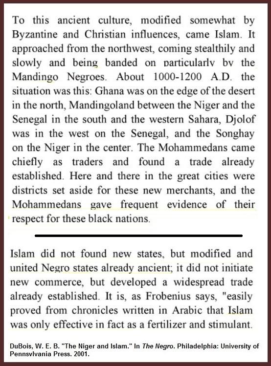 DuBois-Niger-and-Islam-Ch6.jpg