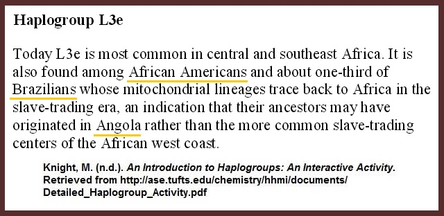 Knight-Haplogroup-L3e-Ch8