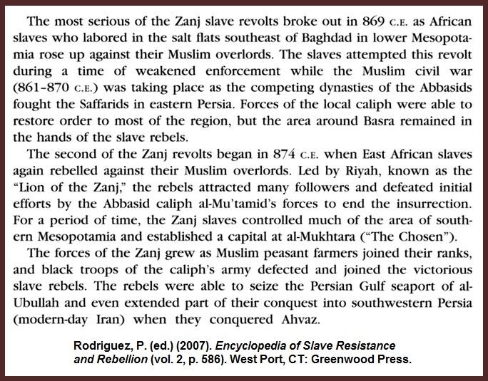 Rodriguez-Zanj-Revolt-Persia-Abbasid